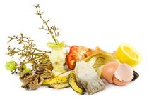 Waste-food-ready-for-compost-on-a-white-background-148487887_3888x2592_preview