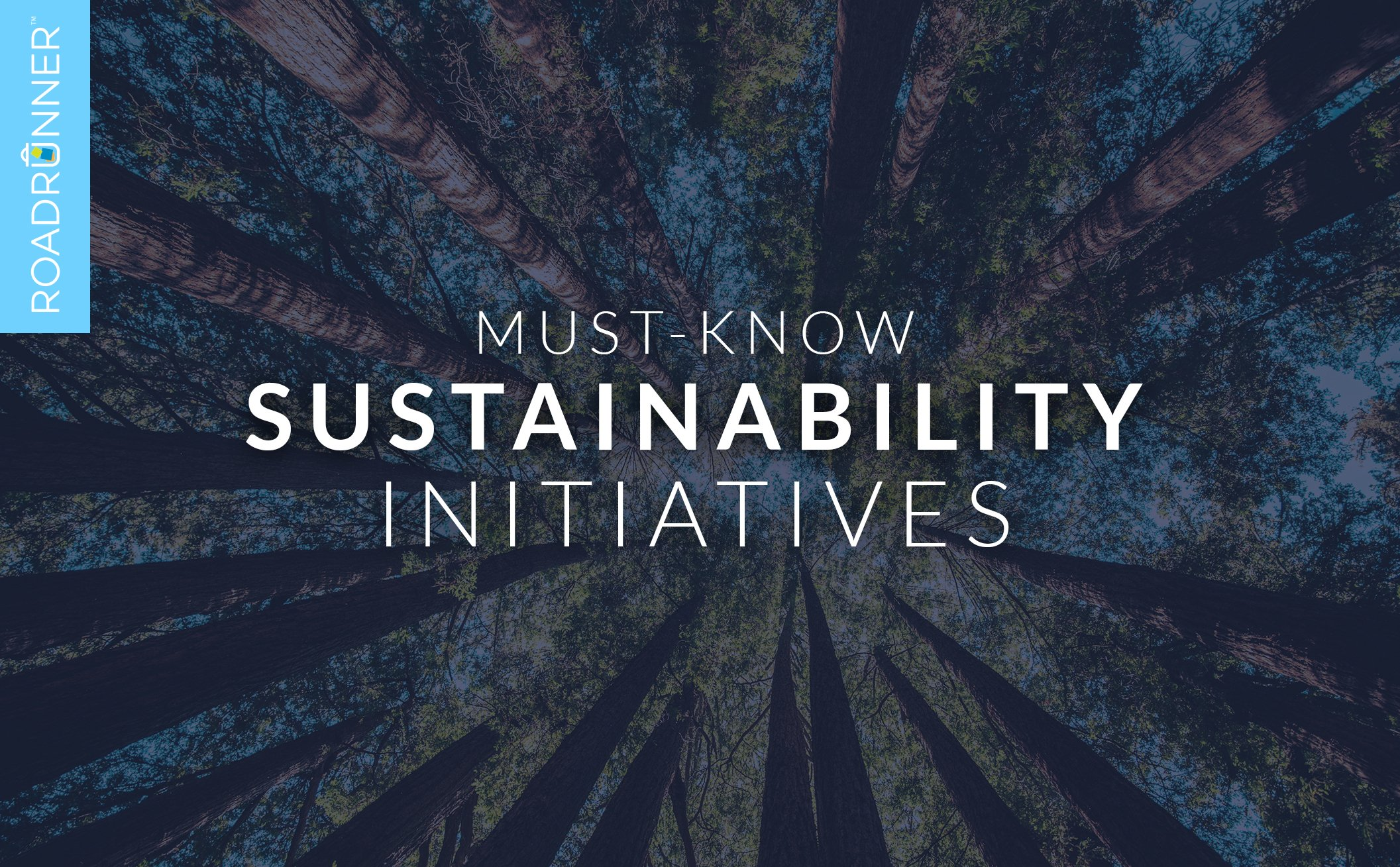 10 Environmental & Sustainability Initiatives to Know This Year