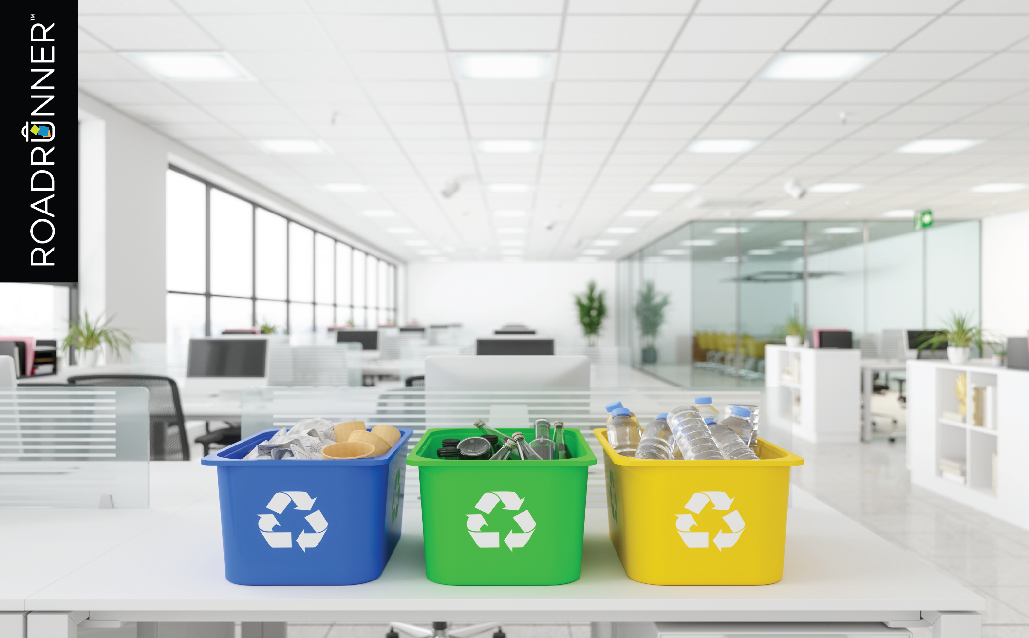 How to Sort Common Recyclables