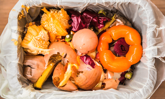 A Guide To Workplace Composting